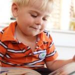 Яркая и познавательная книжка-малышка