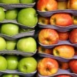 Как хранить яблоки зимой дома