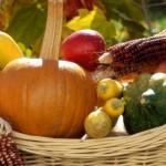 Лунный календарь садовода-огородника на октябрь 2015