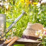 Лунный календарь садовода-огородника на сентябрь 2015