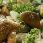 Белые грибы: рецепты приготовления вкусных блюд