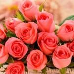 Душевные и прикольные поздравления с днем рождения тете от племянницы