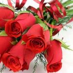 Официальные и прикольные поздравления с Днем налогового работника в стихах и прозе