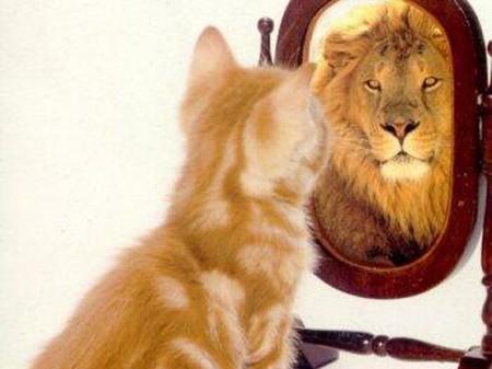 Как быть смелым и экстраординарным