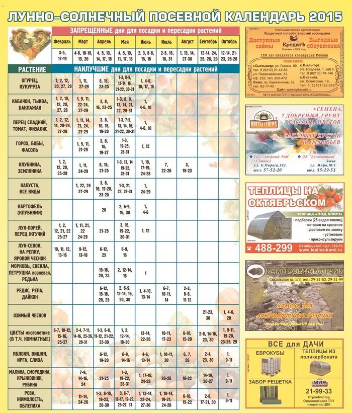 Календарь прививок для детей с 3 лет в россии 2016