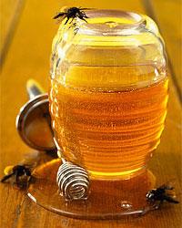 El aceite para la cabeza de la psoriasis